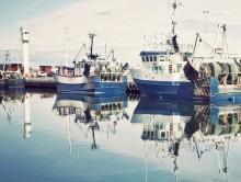 Ny studie från HaV: Överetablering av företag i svenskt fiske