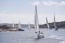 Båtägare i Sverige upplever problem med beväxning enligt ny båtlivsundersökning