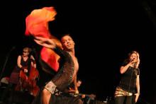 Kultur i Väst-initiativ vann pris på Folk- och världsmusikgalan