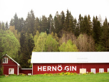 5 Things You Need To Know About: Hernö Gin