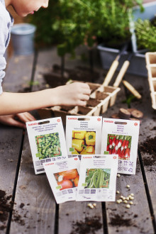 Plantagen lanserar 400 nya fröpåsar – av tomatpapper