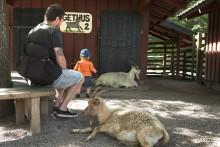 Barnens zoo öppnar