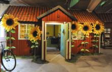"""Pressvisning av """"Pettson och Findus – en lekutställning"""" på Kulturen i Lund"""