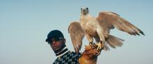 Fri af gadens lænker rapper Jamaika sig ind i de danske stuer