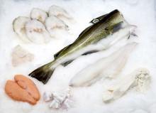 Sterk måned for torsken til tross, nedgang for norsk sjømateksport