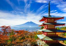 AIFS goes Japan