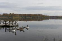 Sjöbo kommun delar ut hållbarhetspris