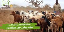 "Pressefrühstück (17.10., Berlin): ""Tierschutz, der Leben rettet"" (20 Jahre Welttierschutzgesellschaft)"