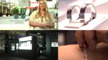 Messeblick.TV auf der INHORGENTA MUNICH 2016 in München