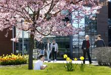 Samarbetsavtal med japanskt universitet ger ny matematikutbildning