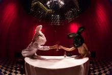 Køn, seksualitet, identitet: The GENDERhouse Festival indtager Aarhus for første gang