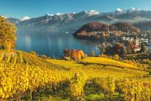 Herbst-Erlebnisse in der Region Bern