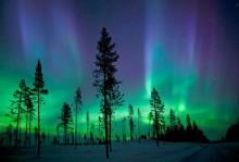 Gold of Laplands nyhetsbrev 21 mars 2016