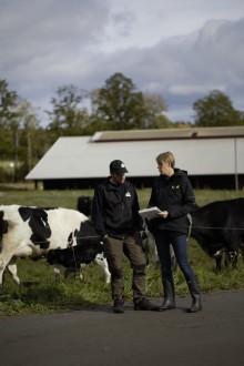 Stort intresse för att räkna ut klimatavtrycket för gårdens produkter