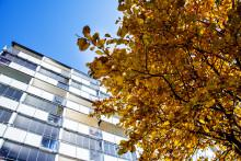 Renoverat miljonprogram i Helsingborg – Årets bygge 2019?