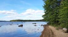 Bildandet av naturreservat ute för samråd