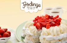 Ny Frödinge-logotyp hyllar det småländska