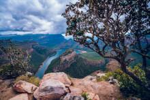 Von Wunderheilern und wilden Tieren: Der #alphaddicted Koffer ist zu Gast in Südafrika