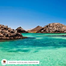 Nyfiken på Fuerteventura?