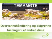 Temamøte Overvann - Innledning - Erik A. Hammer, Grønn Byggallianse