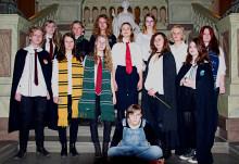 Dumbledore's Armé tar över på Instagram