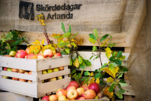 Skördedagar på Arlanda – samarbete mellan flygplats och landsbygd