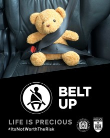 Don't double your chances of dying in a car crash - wear a seatbelt