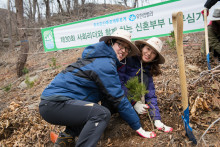 Under Whose Shade:  Three Decades of Keeping Korea Green