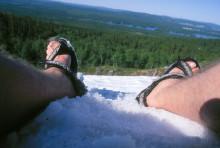 Besöksnäringen i Swedish Lapland når nya höjder