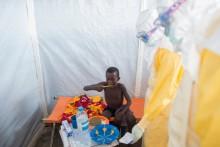 Ny rapport: Ebolainsatsen är ett globalt misslyckande