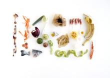 Malmö och Burlöv når nationella målet – samlar in 50 procent av allt matavfall.