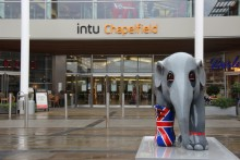 Elephant Parade arrives at intu Chapelfield