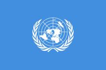 Times newspaper claim UN warned Dubai over kidnap of Princess Latifa
