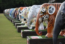 ​Elephant Parade names Elephant Family as its exclusive official conservation partner