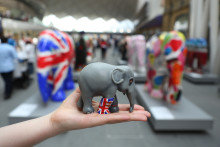 Record breaking Elephant Parade National tour finishes on a high - UK tour successfully auctions off full herd for The Asian Elephant Foundation