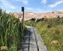 Vill göra naturturism tillgänglig för alla