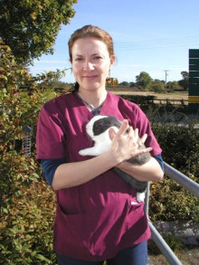 Molly Varga set to give talk on a common emergency at London Vet Show
