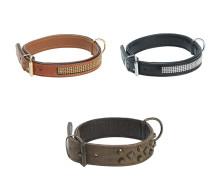Så väljer du rätt halsband till din hund