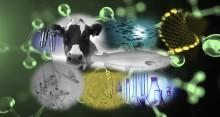 Vekst i bioteknologisk forskning