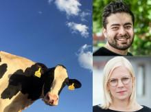 C: Rädda Stockholms sista mjölkgård