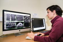 Hallmarq's PetVet MRI upgrade will improve user experience for both Specialists and RVNs