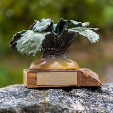 Sesams ideella frö-räddare fick Kålrotsakademiens Stora Pris