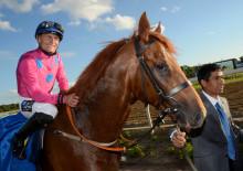 Skandinaviska hästar tävlar om stora pengar på Täby Galopp