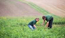 Afterwork: Hållbarhet, cirkulär livsmedelsproduktion och Bjuv