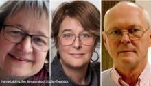 Svenska Bin debatt: Långsiktighet krävs för att utveckla biodlarnäringen