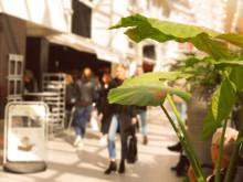 Svenskarnas favoritcentrum 2019 - resultaten är klara