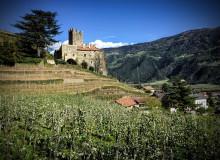 Familienurlaub in Südtirol: Abenteuer für Groß und Klein!