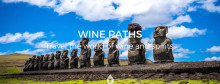 Welcome Chile to Wine Paths!