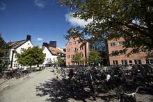 1000 gymnasieelever till Mittuniversitetets Vetenskapsdag