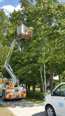 ONE Nordic hjälper Växjö kommun att spara energi